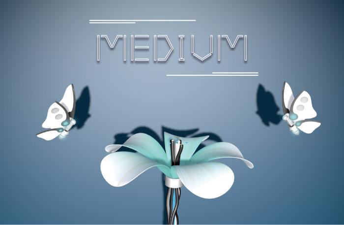 01 MEDIUM