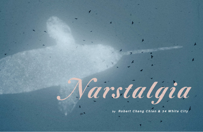 03 Narstalgia